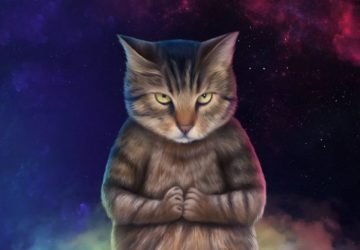 Spiritual connection with cats