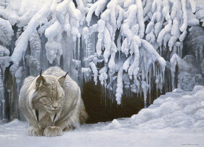 Lynx Spirit Animal - In the snow